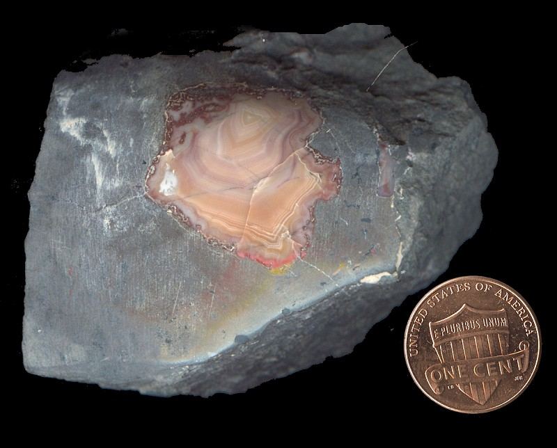 "Dwarves Earth Treasures: ""Copper Agates"" From St. Louis"