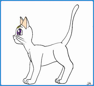 how to draw a cat side view